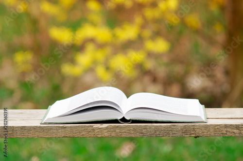 Obraz Otwarta książka na naturalnym tle - fototapety do salonu