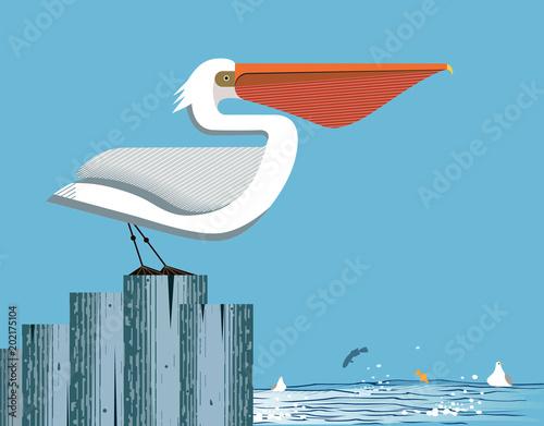 Fototapeta premium Majestic pelican on sky background