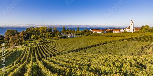 Germany, Baden-Wuerttemberg, Hagnau, Lake Constance, Church and vineyard
