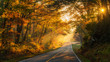 canvas print picture - Streaming Sunlight on a North Carolina Country road in Autumn
