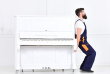 Handsome Bearded Strong Man Lifting Old Wooden Piano With Open Keyboard Isolated On White Background. Side View Handsome Worker Trying To Move Heavy Thing