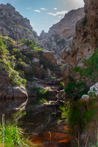 Foto op Plexiglas Bruin View Crystal Pools in the Hottentots-Holland Mountains in Gordons bay, Cape Town, South Africa