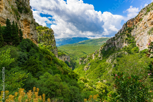 Cuadros en Lienzo Lousios gorge in western Arcadia that stretches from Karytaina north to Dimitsan