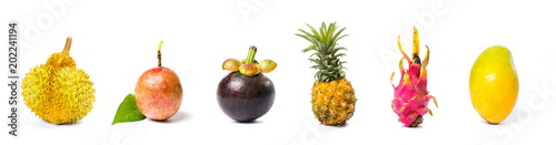 Poster Fruit Tropical fruit collage isolated on white