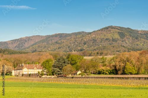 Tuinposter Blauw French landscape - Vosges. Small castle with winery and the Grand Ballon (Vosges) in the background.