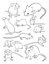 Mice Line Art. Vector, Illustration. Good Use For Symbol, Logo, Web Icon, Mascot, Coloring, Sign, Or Any Design You Want.