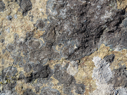 Tuinposter Stenen Rock stone surface texture. Old rough stone covered with lichen