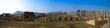 Panorama Palmyra Columns And A...