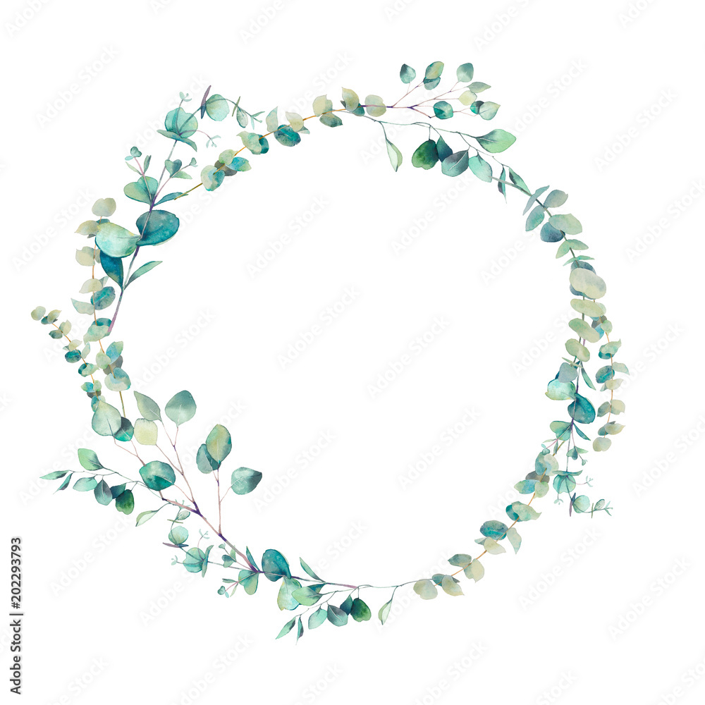 Fototapety, obrazy: Watercolor eucalyptus branches wreath. Hand painted floral clip art: round frame isolated on white background.