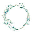 canvas print picture - Watercolor eucalyptus branches wreath. Hand painted floral clip art: round frame isolated on white background.
