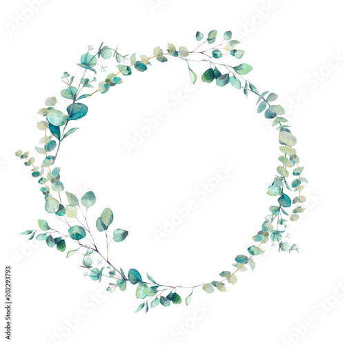 Watercolor eucalyptus branches wreath. Hand painted floral clip art: round frame isolated on white background. Fototapete