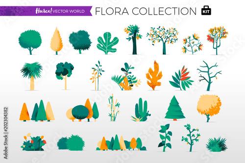 Collezione di alberi e piante da giardino