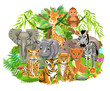 jungle animals like elephant, zebra, giraffe, lion, tiger in the tropical forest