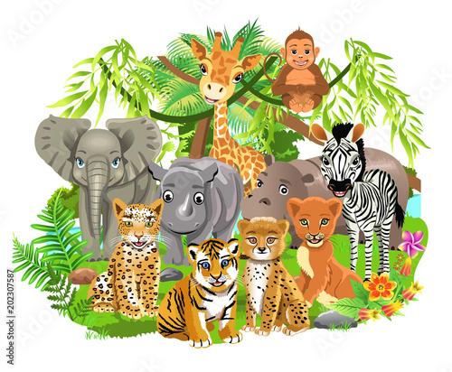 jungle animals like elephant, zebra, giraffe, lion, tiger in the tropical forest #202307587