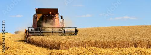 Récolte du blé dans les champs de France Canvas Print