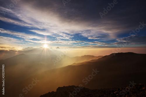 Foto op Canvas Olijf Haleakala