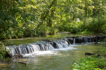 Cascades on Tanew River in Roztocze National Park