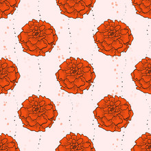 Vector Color Seamless Pattern Of Marigold Flowers
