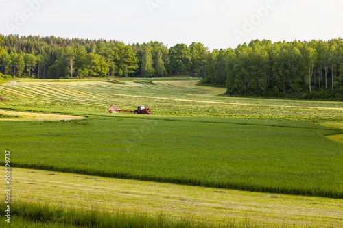 Tuinposter Cultuur Green field