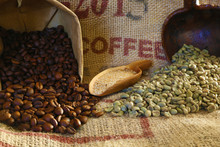 Roasted And Green Coffee Beans On Jute Bag