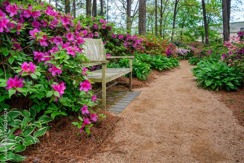 Foto op Aluminium Zalm Azalea and Flower Garden with bench in Raleigh, North Carolina