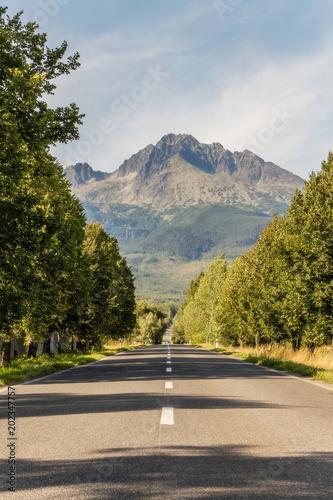 droga-prowadzaca-w-gory-podroz-droga-wsrod-drzew-prowadzaca-w-wysokie