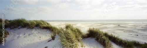 Foto op Plexiglas Noordzee Amrum