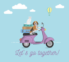 Traveling With Pets Concept Design. Dog And Cat Riding A Scooter Against Blue Background. Vector Illustration.