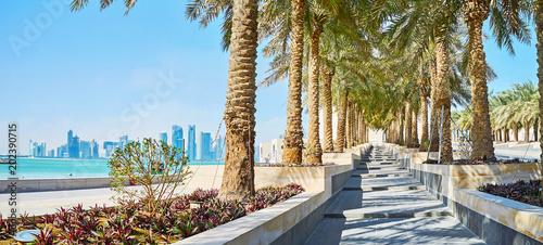 Seascape przez zieleń, Doha, Katar