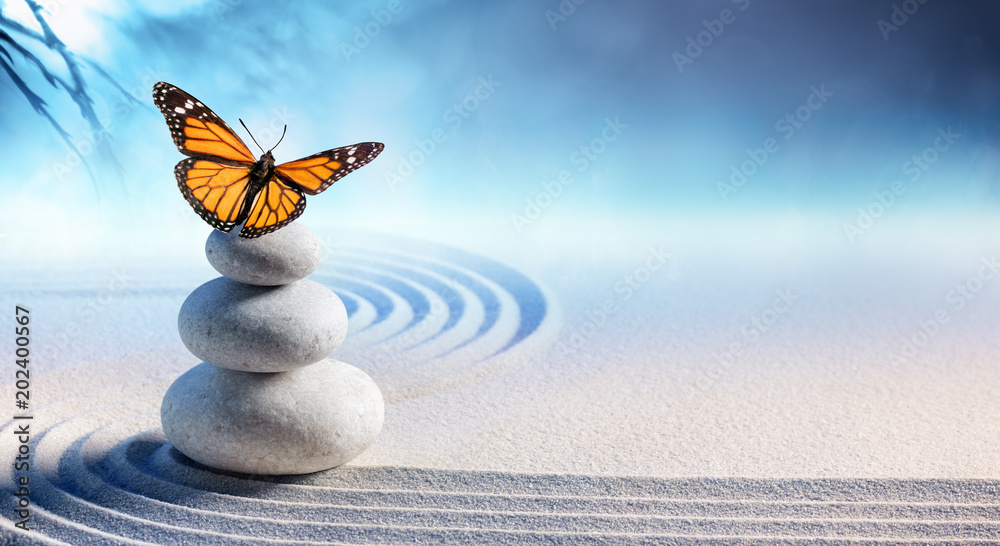 Fototapeta Butterfly On Spa Massage Stones In Zen Garden