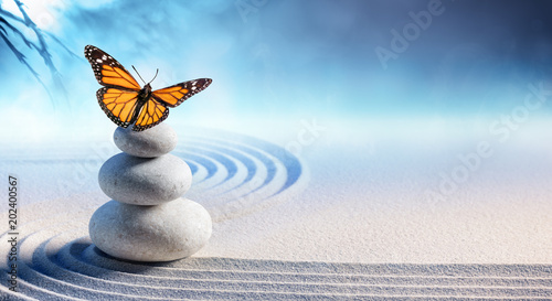Staande foto Stenen in het Zand Butterfly On Spa Massage Stones In Zen Garden