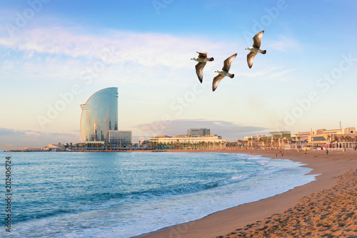 Spoed Foto op Canvas Barcelona Barceloneta Beach in Barcelona with colorful sky at sunrise. Seafront, beach,coast in Spain. Suburb of Barcelona, Catalonia
