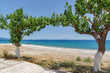 Amazing view of the beach of Poros, Kefalonia, Ionian Islands, Greece
