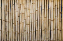 Canisse Ou Brise Vue En Bambou, Clôture Ou Palissade En Bois Naturel.