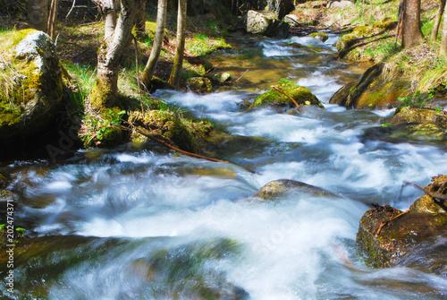 Staande foto Rivier rivière de montagne