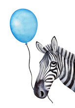 Funny Zebra Character Holds A String With A Holiday Balloon In Mouth. Hand Drawn Watercolour Graphic Painting On White Background, Cutout Clip Art. Party Print, Poster Template, Festive Decoration.