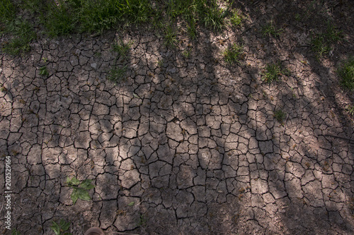 Fotografie, Obraz  Solchi nella terra