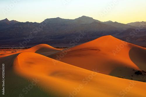 Deurstickers Marokko Sand dunes sunrise in Death Valley, California, USA.