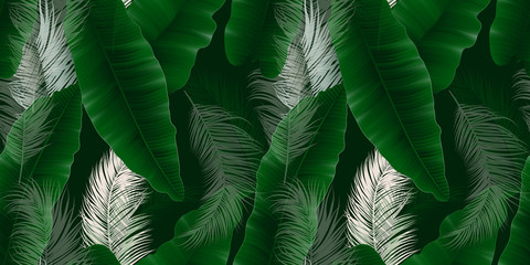 Panel Szklany Liście Seamless pattern, green Asplenium nidus, Birds Nest Fern and palm leaves on dark green background