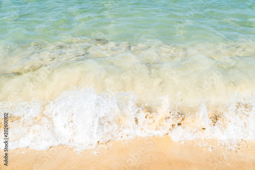 Canvas Prints Countryside Sea wave on beach