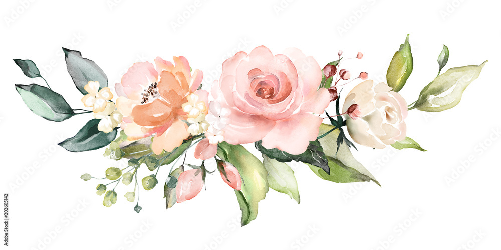 Fototapety, obrazy:  watercolor flowers. floral illustration, Leaf and buds. Botanic composition for wedding or greeting card.  branch of flowers - abstraction roses