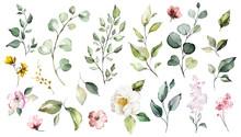 Big Set Watercolor Elements - ...