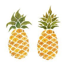 Pineapple. Isolated On White Background. Watercolor Hand Drawn Illustration.
