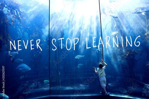 Fotografía never stop learning against little boy looking at fish tank