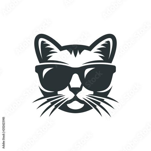 Photo  Cat in sunglasses