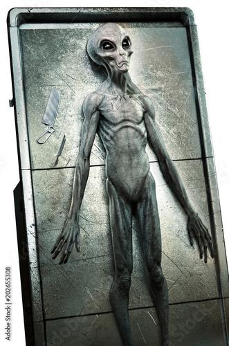 Photo Alien autopsy 3D illustration