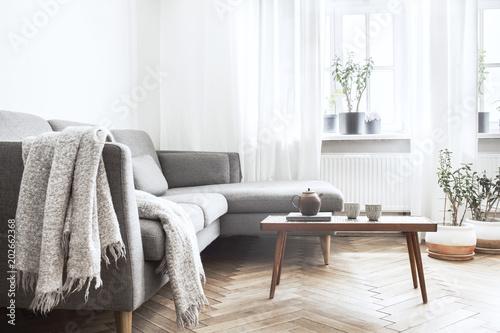 Modern interior with small designer table, sofa and plants Slika na platnu