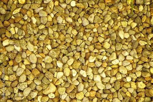 Keuken foto achterwand Brandhout textuur Ultra yellow Stone texture, rock surface level, pebble background for web site or mobile devices
