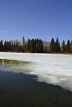 Partially Frozen Pond At Hawre...