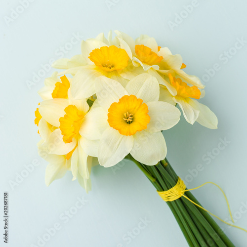 Papiers peints Narcisse Spring flowers daffodil bouquet - white narcissus on blue pastel background.